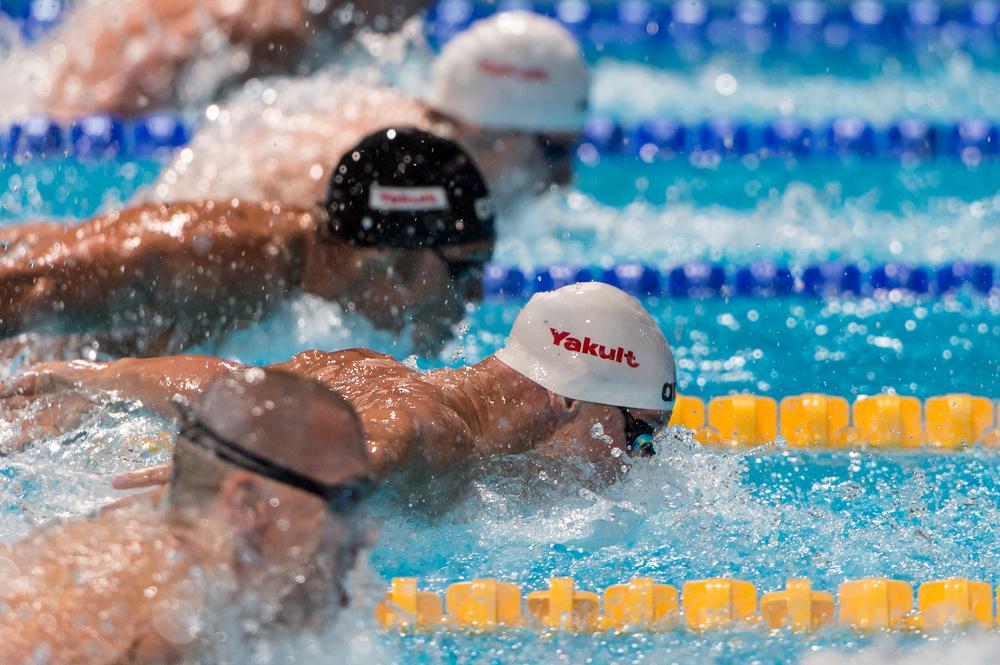 Pływanie - Mistrzostwa Świata 2019